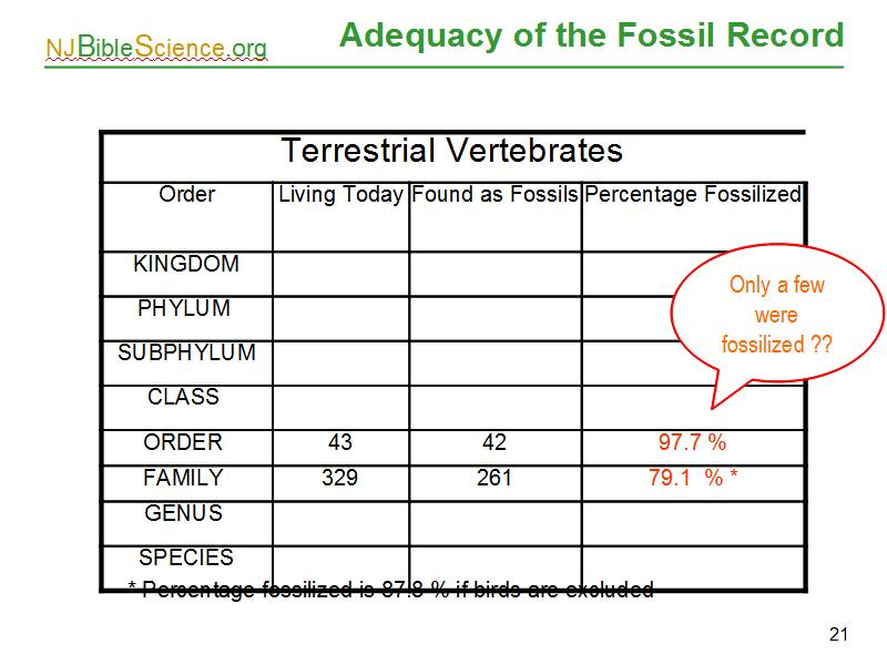 Fossil Record Evolution Evidence Worksheet – Fossil Record Worksheet