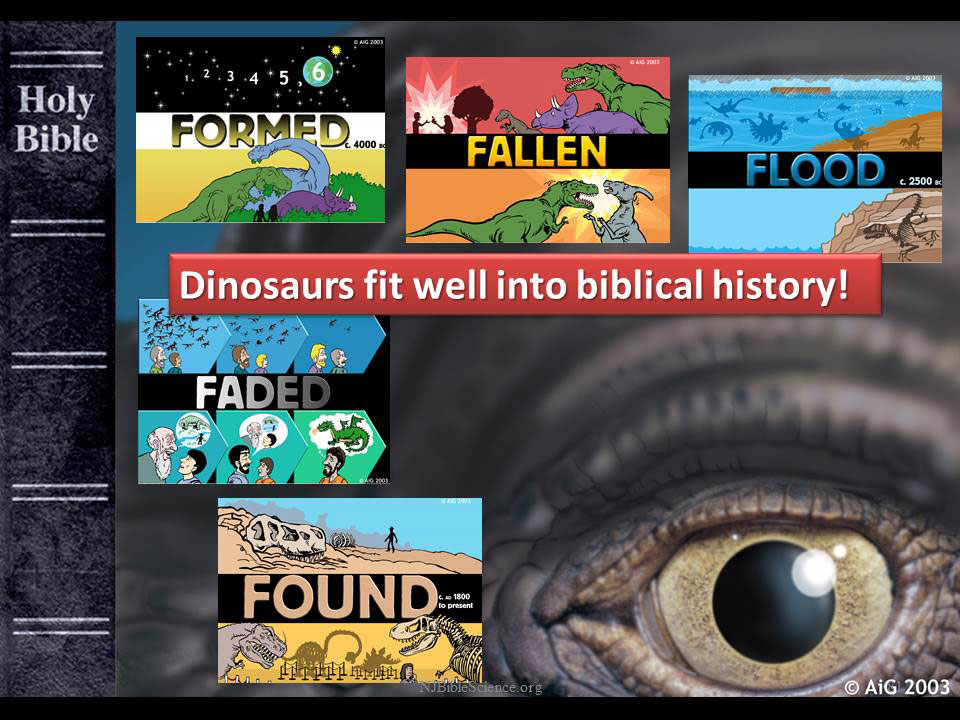 Dinosaurs fit biblical history diagram