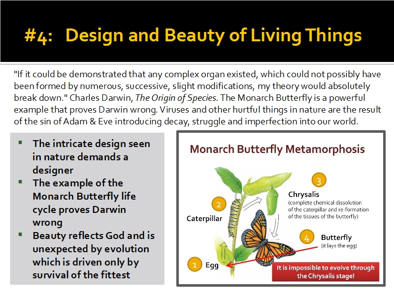 Evidence #4 - Design and Beauty of Living Things