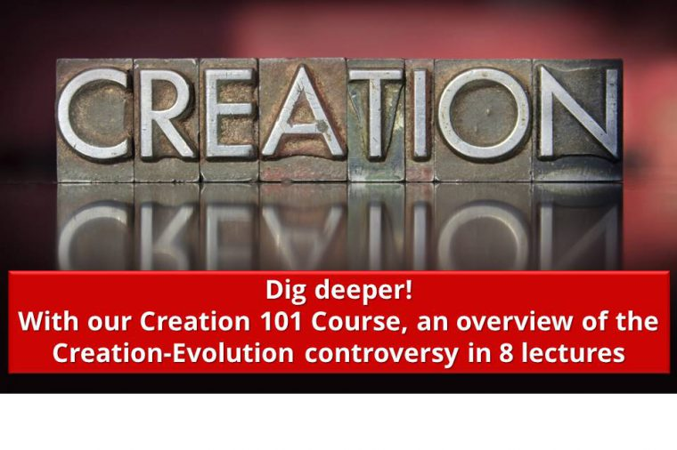 Dig deeper with our Creation 101 Course, an overview of the Creation-Evolution controversy in 8 lectures.