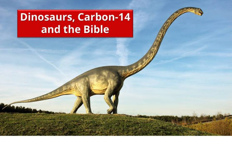 Dinosaurs, Carbon-14 and the Bible